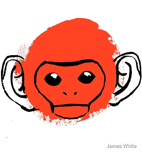 Monkey by lintho