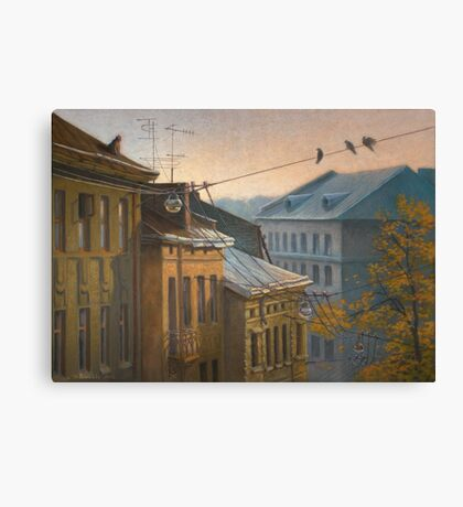 Let's Fly? Canvas Print