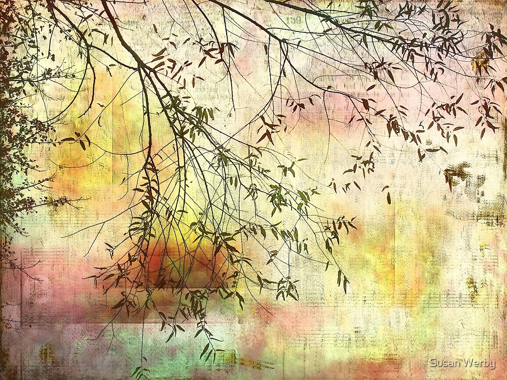Daydreams by Susan Werby