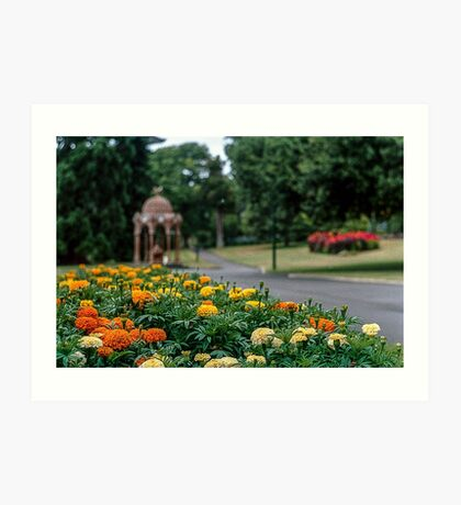 City Park, Launceston. Art Print