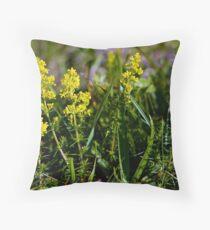 Galium Verum (Lady's Bedstraw), Inishmore, Aran Islands Throw Pillow