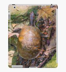 2016 Box Turtle iPad Case/Skin