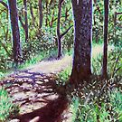 'Sunlight on the Trail' by Jerry Kirk