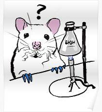 Chemistry Rat Poster