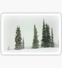 Bleak Winter Landscape Sticker