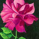 Pencil Rose by Janice Dunbar