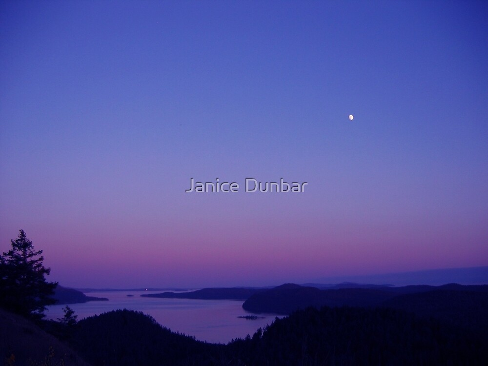 View From Mayne Island BC by Janice Dunbar