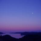 View From Mayne Island BC by Janice Dunbar