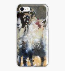 Posing Swaledales iPhone Case/Skin