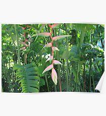 Beautiful Tropical Greenery Poster