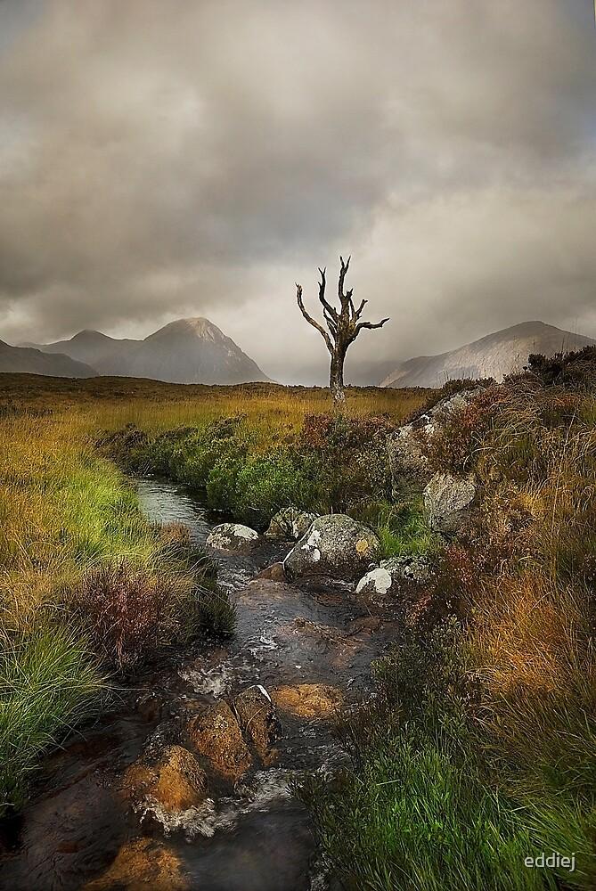 Rannoch Moor - Scotland by eddiej