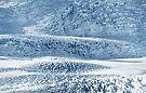 Glacier by Svetlana Sewell