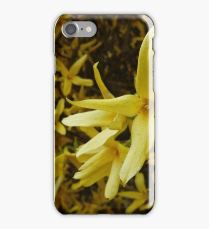 Forsythia Hedge iPhone Case/Skin
