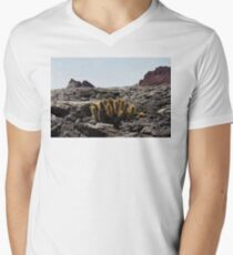Galapagos Lava Cactus Mens V-Neck T-Shirt