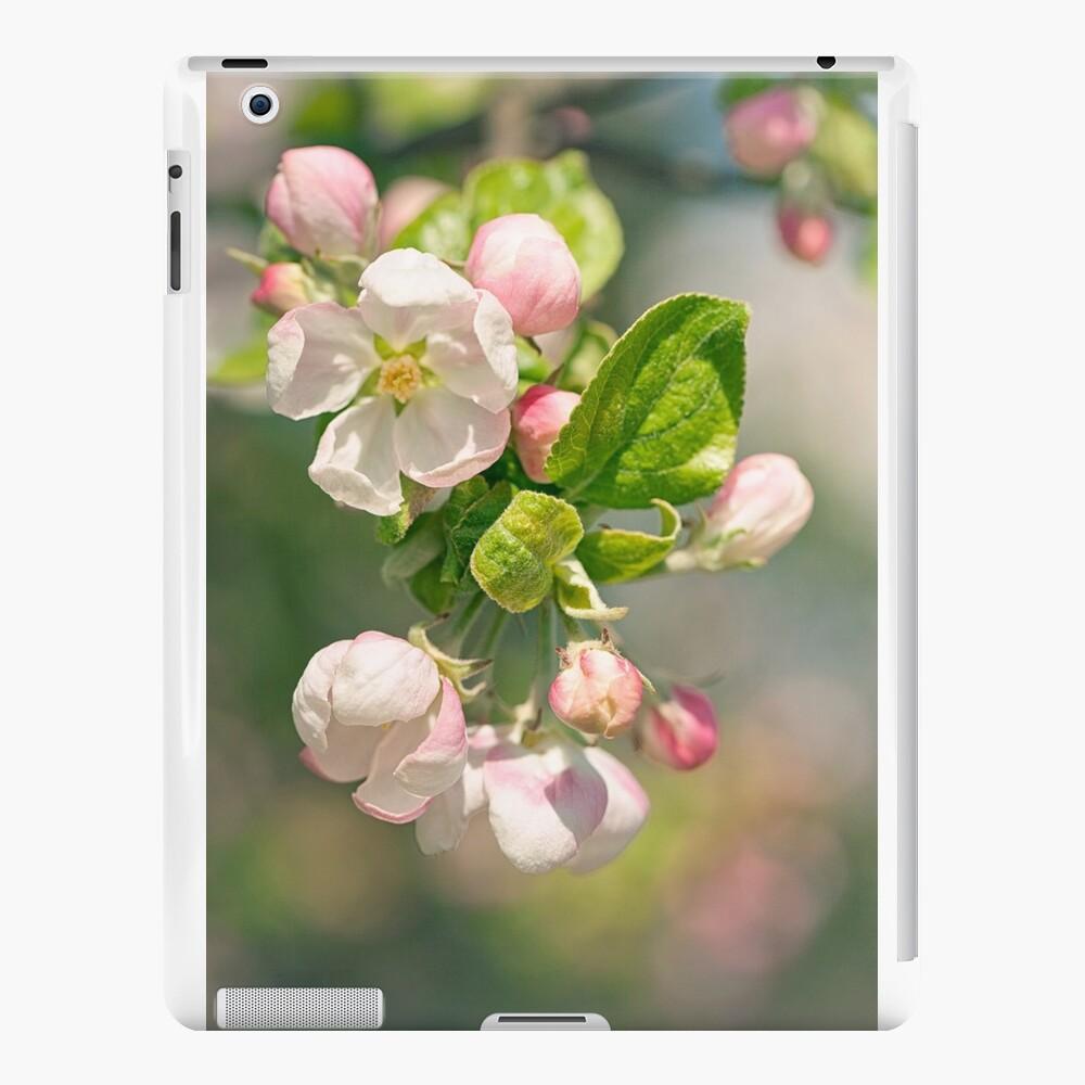 Apfelblüte iPad-Hüllen & Klebefolien