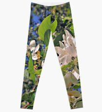 Flowers in White (Ver. 2) Leggings