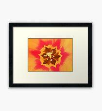 Inside of a tulip. Framed Print