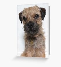 Heidi HellHound Border Terrier Dog Greeting Card