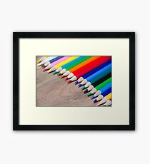 Colorful life 3 Framed Print