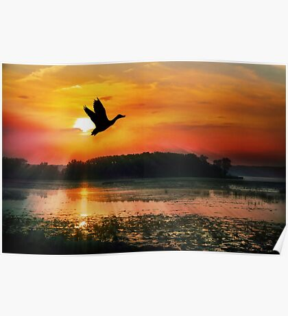 Sunset on the Mississippi River Flyway Poster