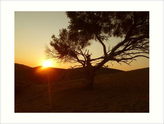 Sand Dune Sunset by Vicki Spindler (VHS Photography)