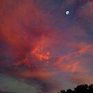 Moon in a Painted Sky by Wayne King