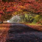 Autumn Splendour- The HDR Experience by Philip Johnson