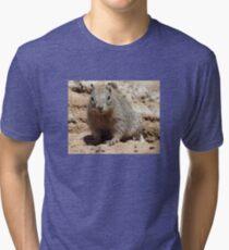 Squirrel Friends  Tri-blend T-Shirt