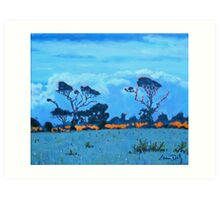 West Cork Trees, Ireland Art Print