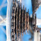 Bike gears  by Martyn Franklin