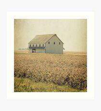 Lost in the prairie Art Print