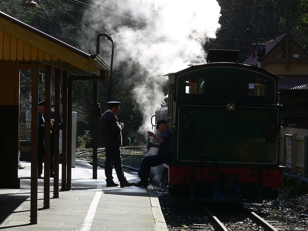 Puffing Billy  by PhotosByG