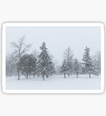 Snowstorm - Tall Trees and Whispering Snowflakes Sticker