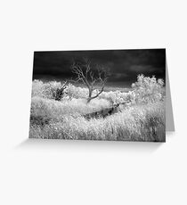 Barrabool River and stormclouds Greeting Card