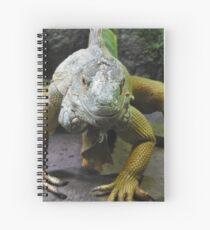 Cuaderno de espiral Iguana verde