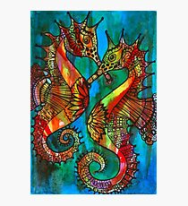 Seahorses - Kerry Beazley Photographic Print