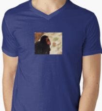 California Condor in the Wild 04 Mens V-Neck T-Shirt