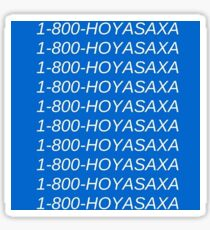 1 800 Hoya Saxa Sticker
