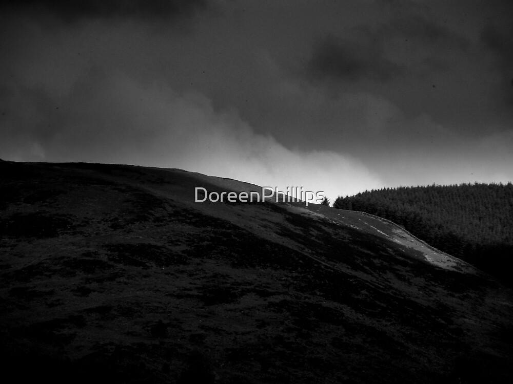 Elan Lina Doon by DoreenPhillips