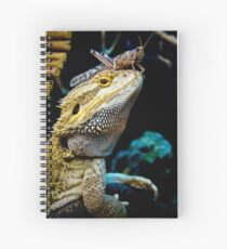 Smaugling's Dinner Hat Spiral Notebook