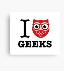 I Owl Geeks (love heart) Canvas Print