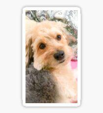 Adorable Dog Sticker