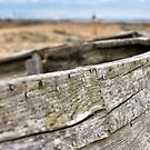 Dungeness Through a Prime Lens 14 by Andy Coleman