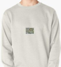Lion of love Pullover