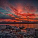 Bay of Fires by Steve Randall