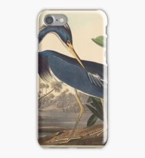 John James Audubon - Louisiana Heron 1834 iPhone Case/Skin