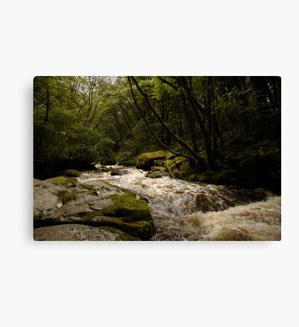 Golitha Falls Canvas Print
