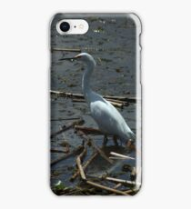 Great Heron in a Lake iPhone Case/Skin
