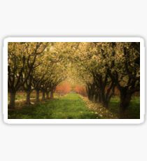 Fruitful Blooms of Spring Sticker