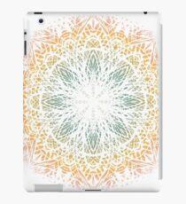 Mandala. Vintage decorative elements. iPad Case/Skin